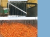 buco_12_falling-film-chiller-carrot-cooling